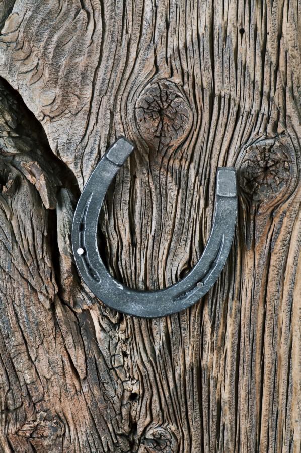 حدوات الخيول