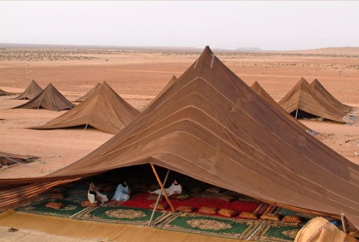 الخيمة الصحراوية