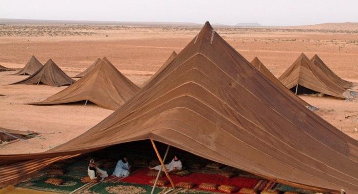 House Desert