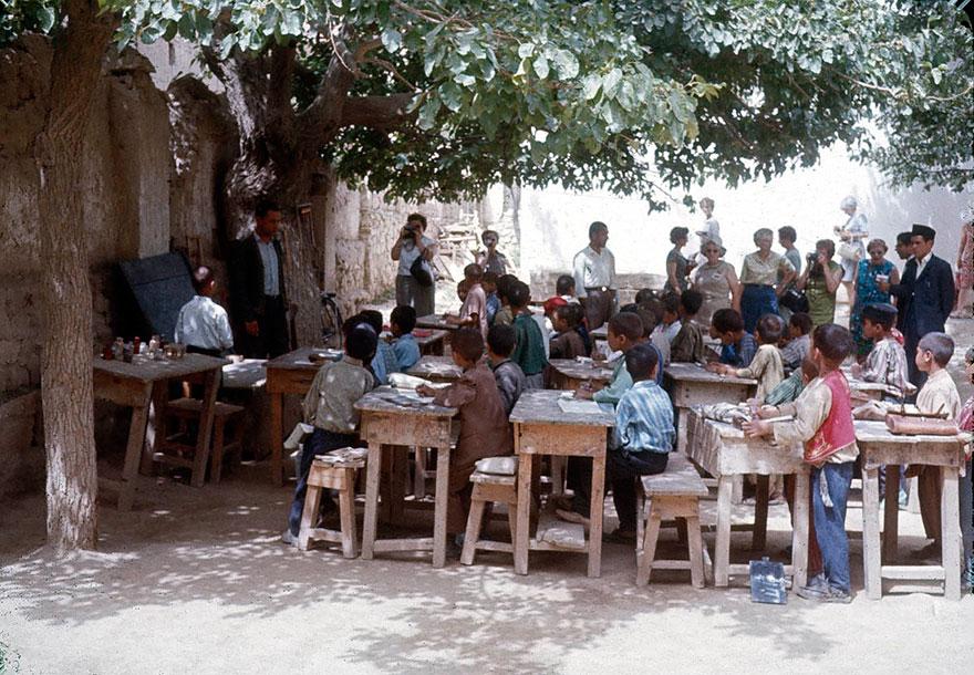 تعليم تحت الشجرة