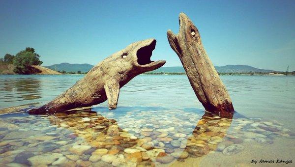 تماثيل خشبية