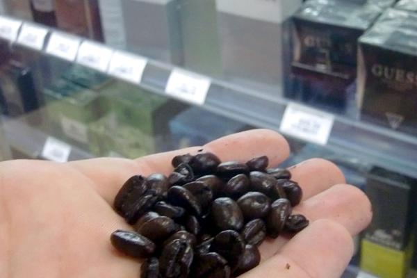 حبوب القهوة