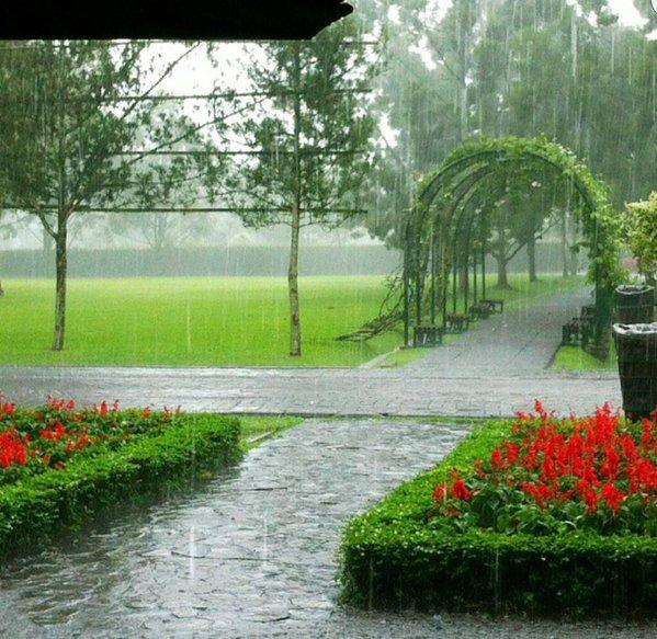 حديقة الزهور في إندونيسيا