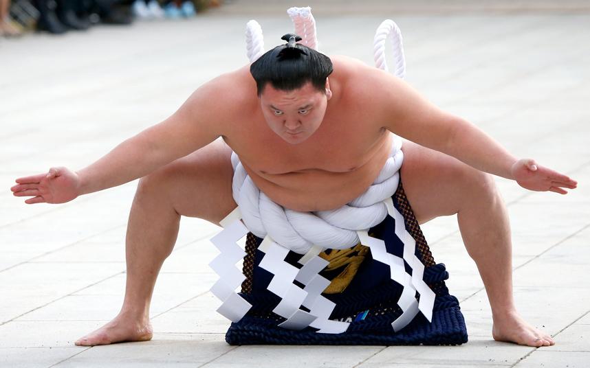 رجل سومو