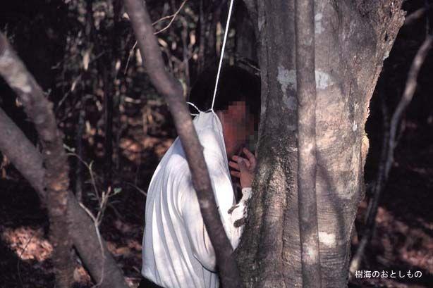 غابة أوكيجاهارا