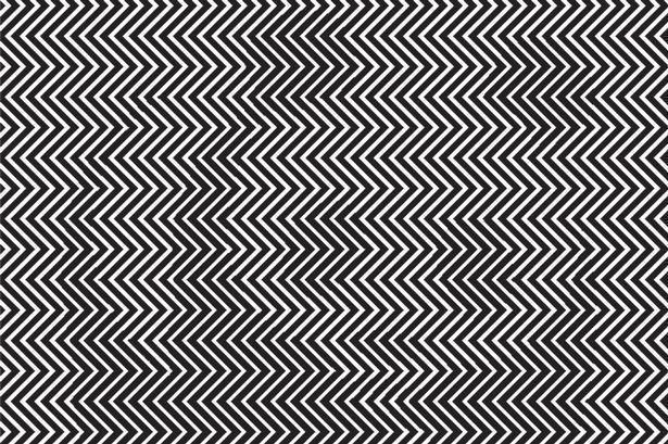 تقدر تعرف الحيوان المتخفي بين الخطوط