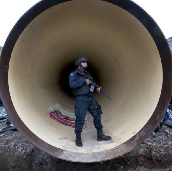 تاجر المخدرات المكسيكي