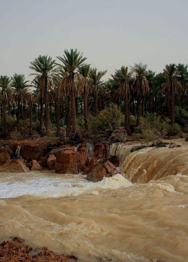 ظواهر طبيعية في السعودية