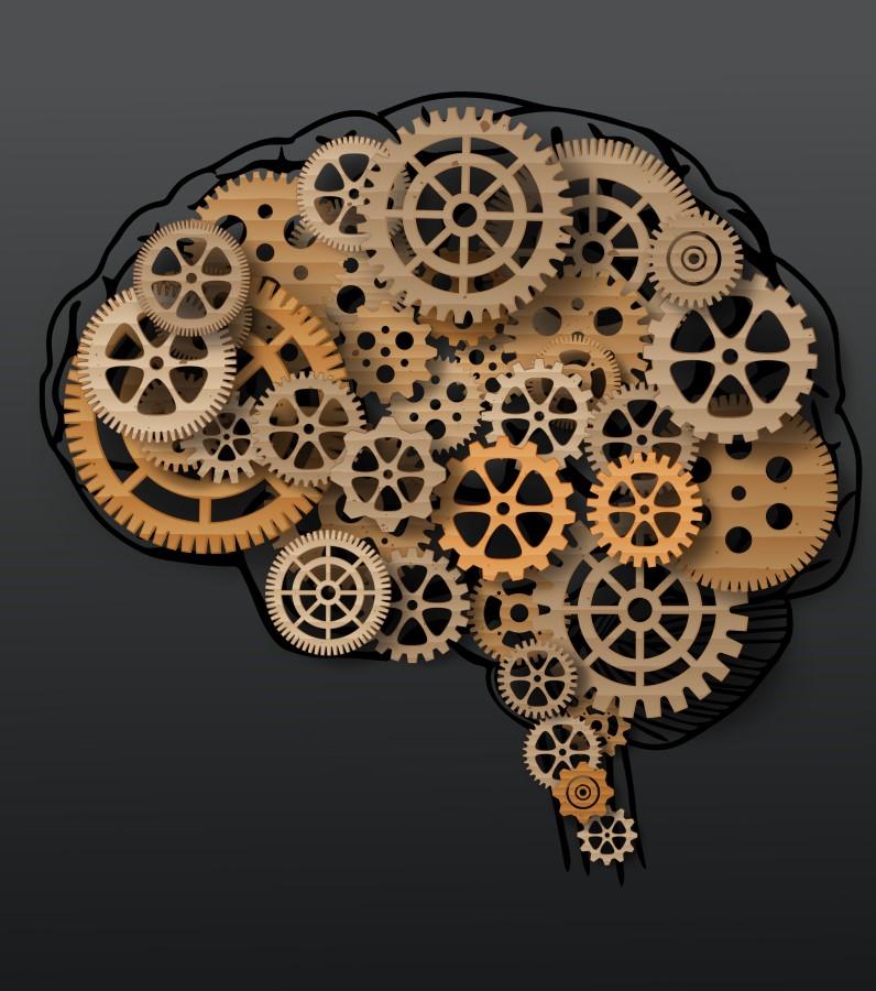 الإنسان يستخدم 10% فقط من دماغه