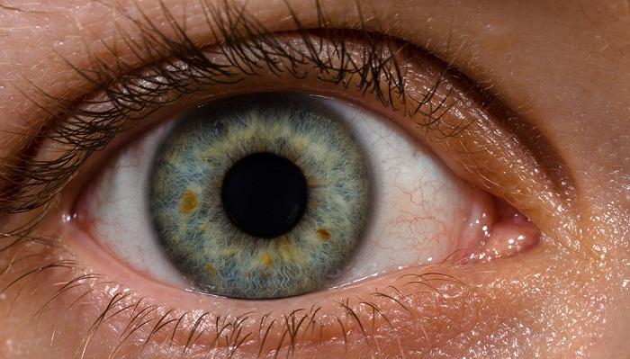 الرؤية للعين البشرية