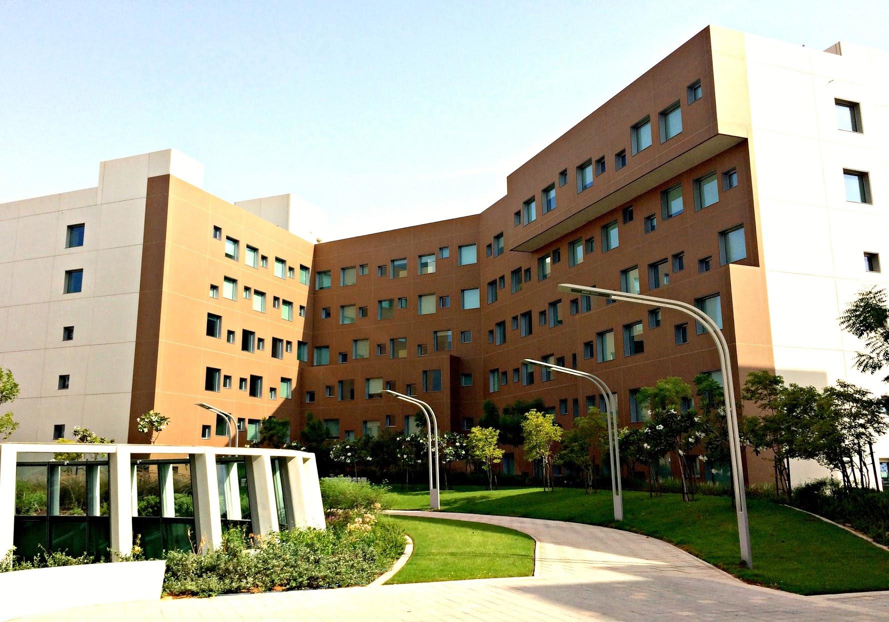 جامعة نيويورك أبوظبي