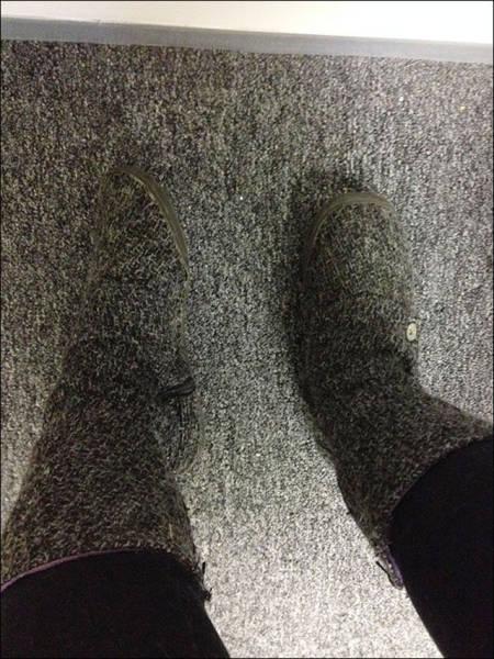 حذاء بلون الموكيت