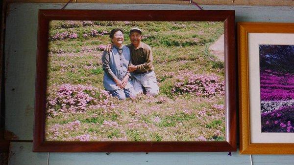 صيني يزرع الأزهار