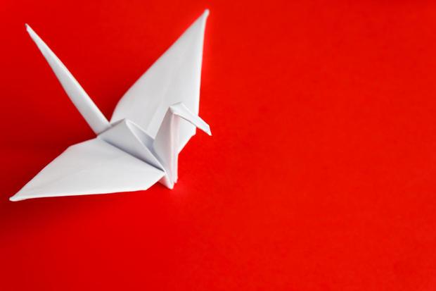 طائر الكركي الورقي