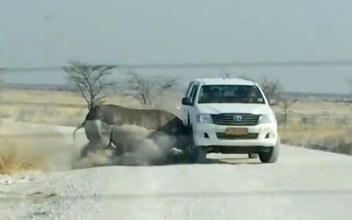 وحيد قرن غاضب