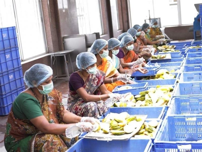 المطابخ وتجهيز الأطعمة حول العالم