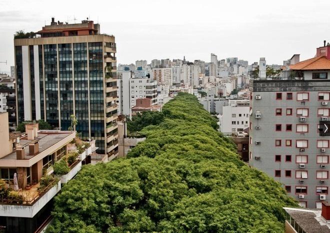 شارع برازيلي جميل