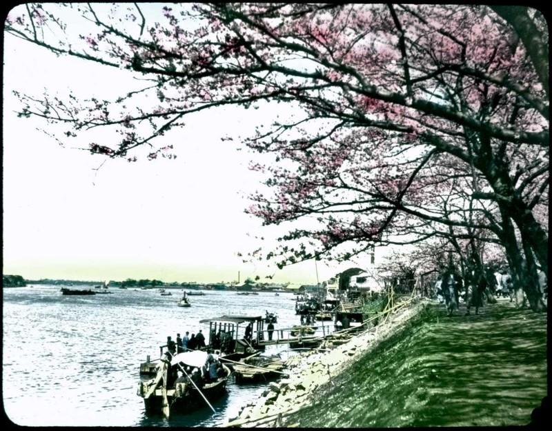 اليابان قديماً