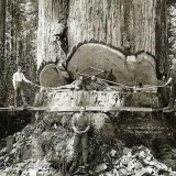 Rare Historical Photos