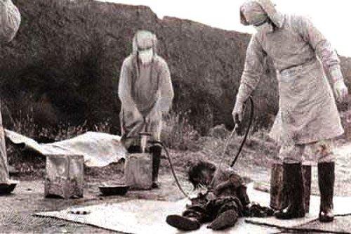 الوحدة اليابانية 731