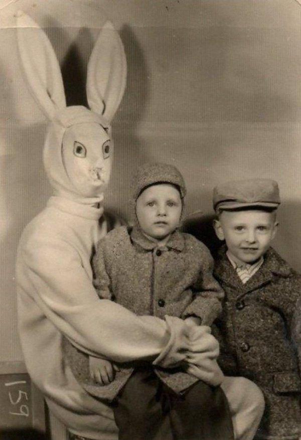 دمى الأرانب