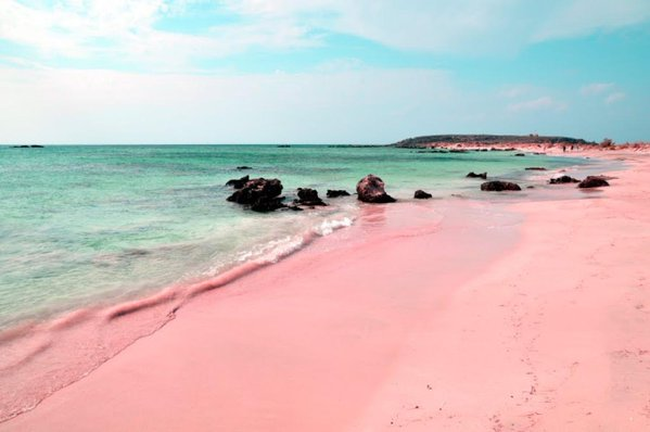 شاطئ الرمال الوردية