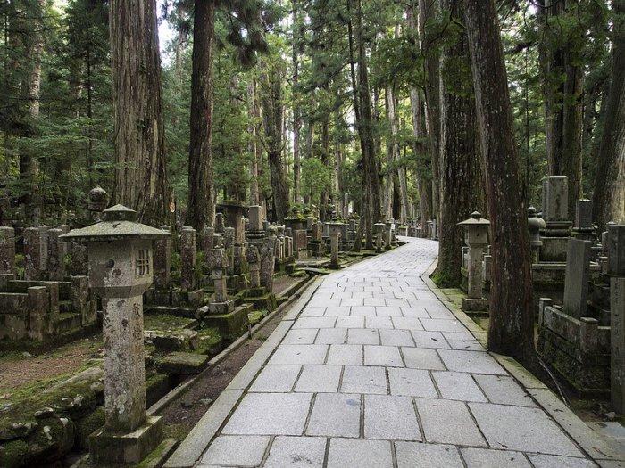 أكبر مقبرة في اليابان 233162