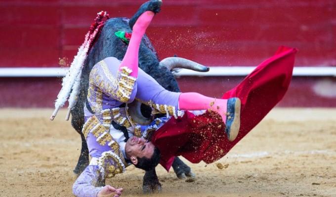 صور حول العالم: مصارعة الثيران في إسبانيا والمزيد..