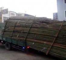 مهارة سائق الشاحنة