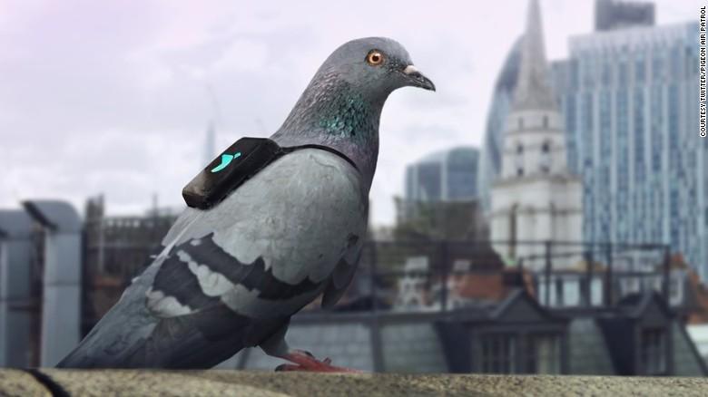 أجواء لندن