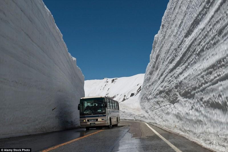 طريق وسط الجليد