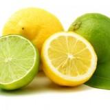 Lemons Have Seeds
