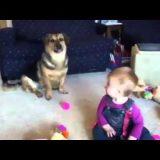 ضحكة طفل مع كلب