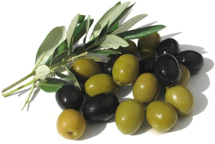 الزيتون الأخضر