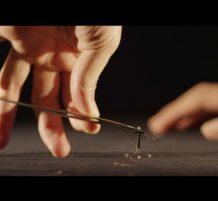 أصغر روبوت على شكل حشرة