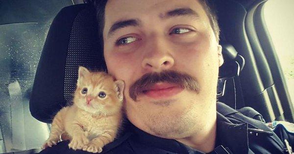 شرطي وقطة