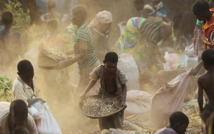 فصل الحبوب عن التربة