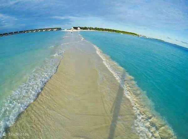 ممشى في المالديف