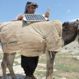 Charges Phone Using A Donkey and A Solar Panel
