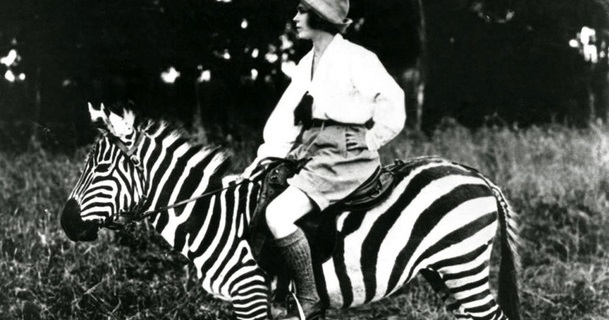 Ride Zebras