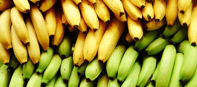Ripe vs Green Bananas