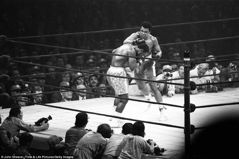 الملاكم محمد كلاي