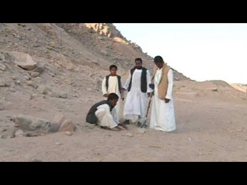 مصريون يبحثون عن الذهب
