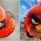 ريد في Angry Birds