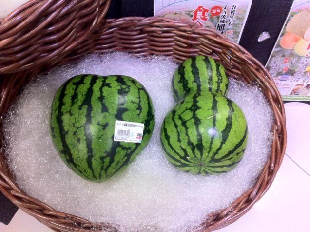أشكال البطيخ الياباني