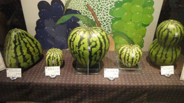 أشكال البطيخ في اليابان