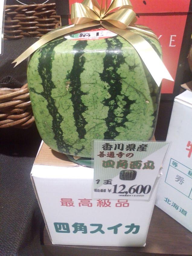 البطيخ المربع