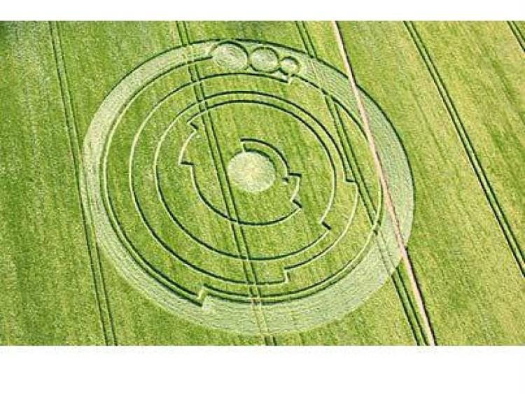دائرة محاصيل