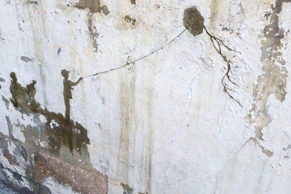 صور منوعة: التعبير عن معاناة اللجوء الفلسطيني بتقشير الجردان