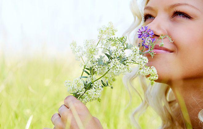 scents receptors